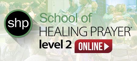 shp level 2 online format