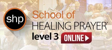 shp level 3 online format
