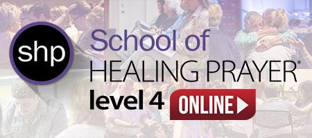 shp level 4 online format
